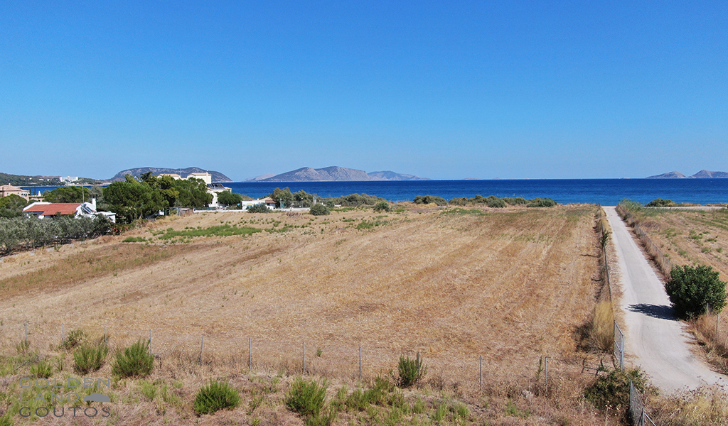 Seafront plot of land of 12,000 sqm