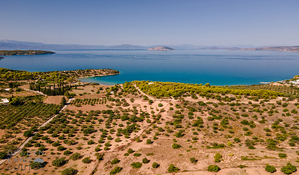 Plot of 50.000 sqm in Doroufi